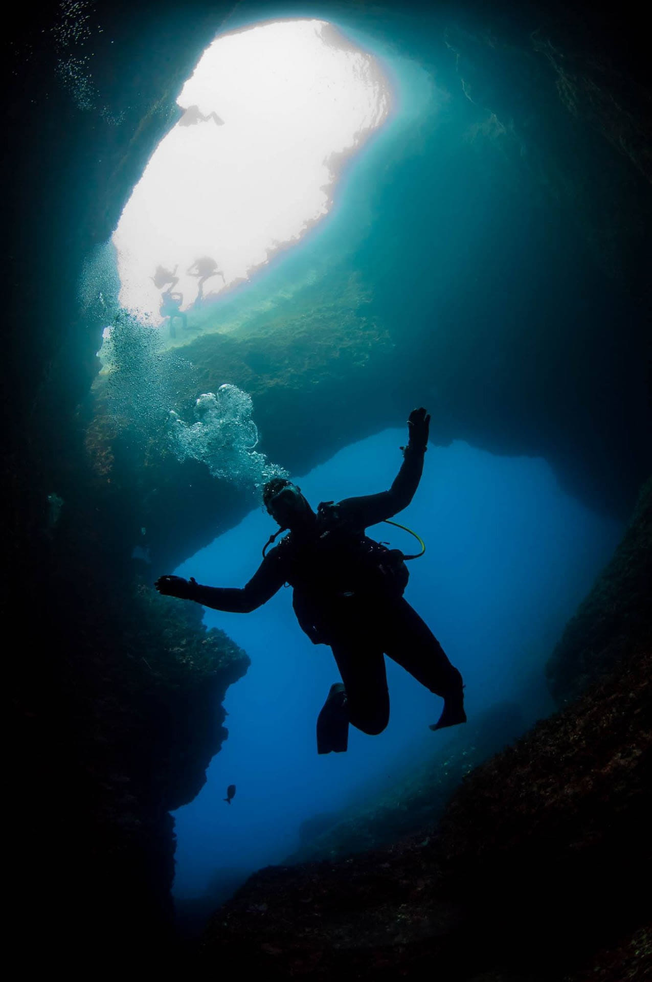 St Andrew's Divers Cove - Diving Equipment & Supplies
